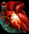 Behemoth's Heart
